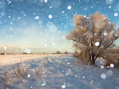 幻想の冬×フォトジェニック