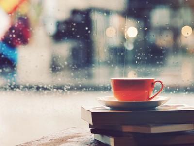 雨の日に、つい長居したくなるカフェ特集