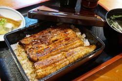夏にぴったり☆立川で美味しいうなぎが食べられる厳選5店!