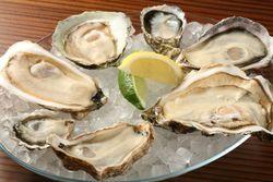東京で美味しい牡蠣が食べたい!おすすめのお店7選☆