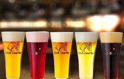 【新宿からクラフトビールの世界旅行へ!】様々なグルメと一緒に楽しもう♪