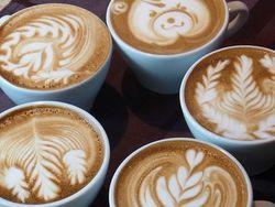 都市と自然の街、つくばで味わうこだわりのコーヒー6選♪