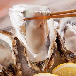 【大阪】牡蠣にうるさい!筆者のおすすめ7店