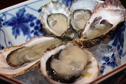 美味しい牡蠣が食べたい!筆者厳選☆有楽町で牡蠣を楽しめるお店8選