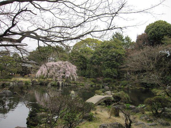 【三島】暑い夏を吹き飛ばす!筆者おすすめの三島旅5選!の画像