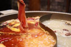 【大阪】心も体も温まろう!大阪で鍋がいただけるお店7選