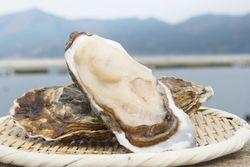おすすめの牡蠣料理もいただくなら【北千住】筆者が厳選する6店をご紹介♪