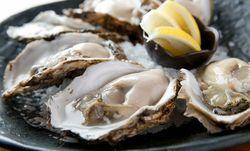 浅草で絶品牡蠣を食べるならココ!おすすめのお店6選!