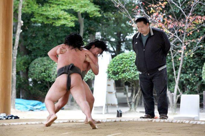 大相撲九州場所が熱い!福岡国際センターで11/23まで☆の画像