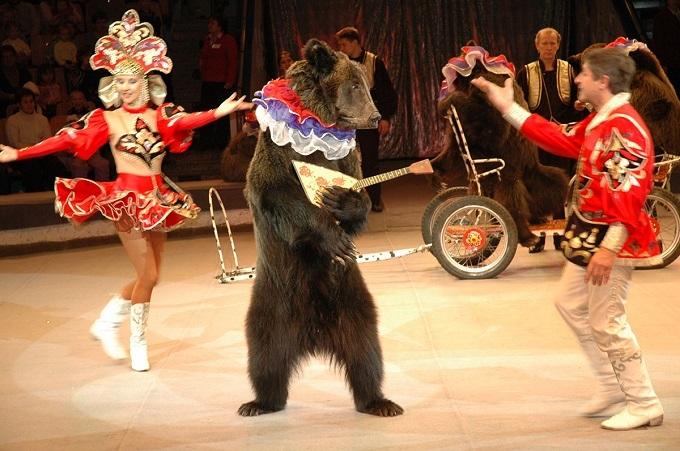 夏休みの思い出は「ボリショイサーカス」で!動物たちの華麗な舞台と驚きのイリュージョン!の画像