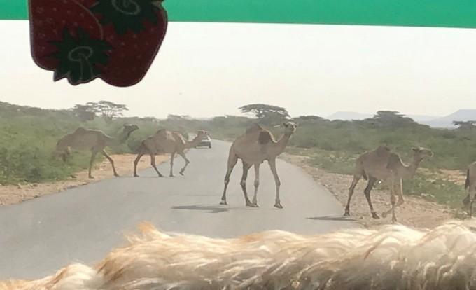 """「謎の独立国家」と言われる""""自称""""独立国・ソマリランドの画像"""