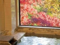 【東京】カップル必見の温泉がある旅館・ホテル7選をご紹介♪