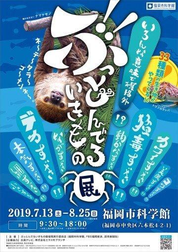 福岡のクールシェアスポットで館内イベント満喫【夏休みレジャー特集2】の画像