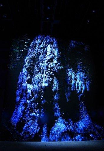 天神で月光浴! 写真家石川賢治さんの個展を見てきたの画像