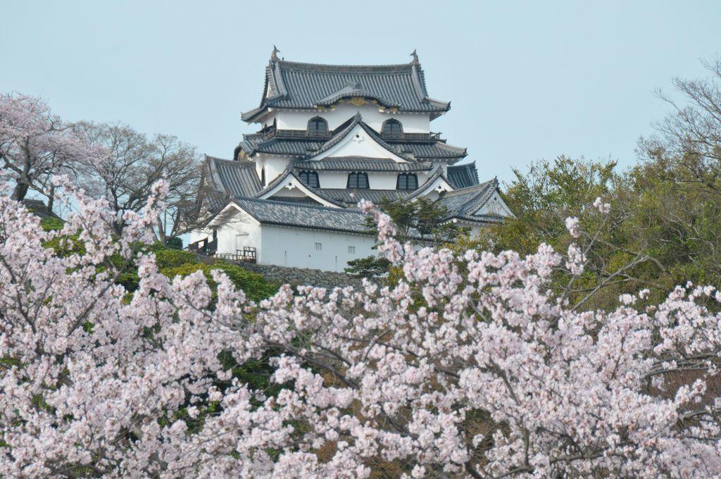 滋賀といえばここだけは絶対チェック!おすすめスポット10選の画像