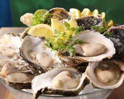 大井町で新鮮な魚介料理はいかが?プリプリの牡蠣を堪能できるお店