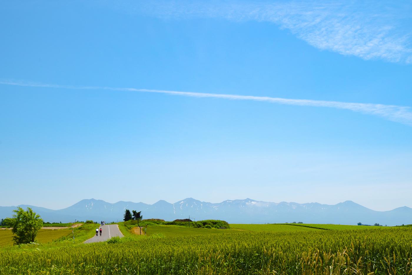 北海道の絶対外さない観光スポット!エリア別おすすめ観光地15選♪の画像