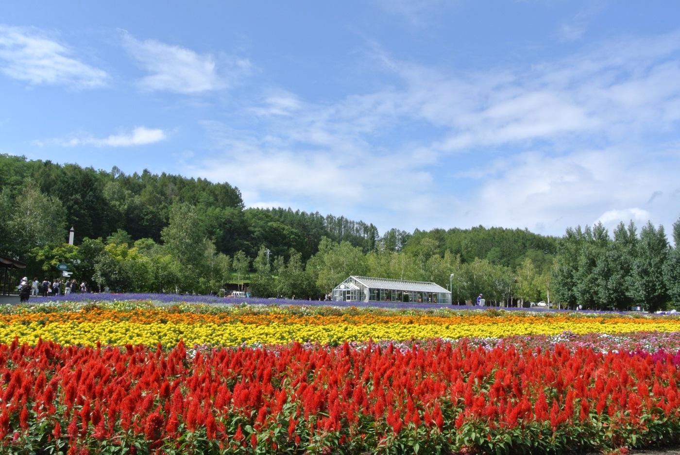 一度は訪れてみたい!北海道のおすすめ観光スポット♡の5枚目の画像の画像