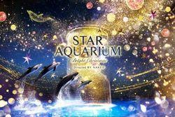 【マクセル アクアパーク品川】今年も「STAR AQUARIUM」開催決定♪