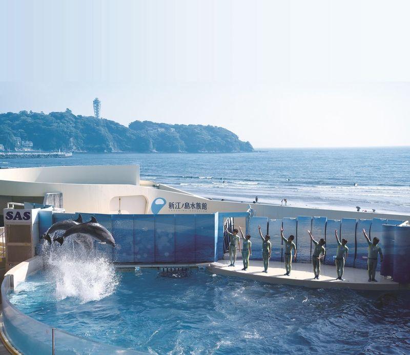 観光 江ノ島 江の島観光おすすめ20選&基本情報やモデルコースで迷いなし! 【楽天トラベル】