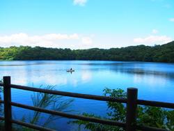 自然がいっぱい☆癒される伊豆高原の観光おすすめスポット6選!