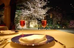 【2018】渋谷・目黒・千代田のレストランでお花見!おすすめ4選
