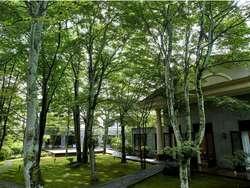 【軽井沢】高級ホテルおすすめ4選!人気宿で優雅に過ごそう