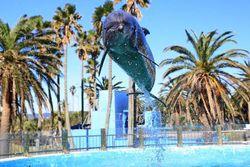 【神奈川の水族館4選】この夏は海の生き物に癒されよう♡