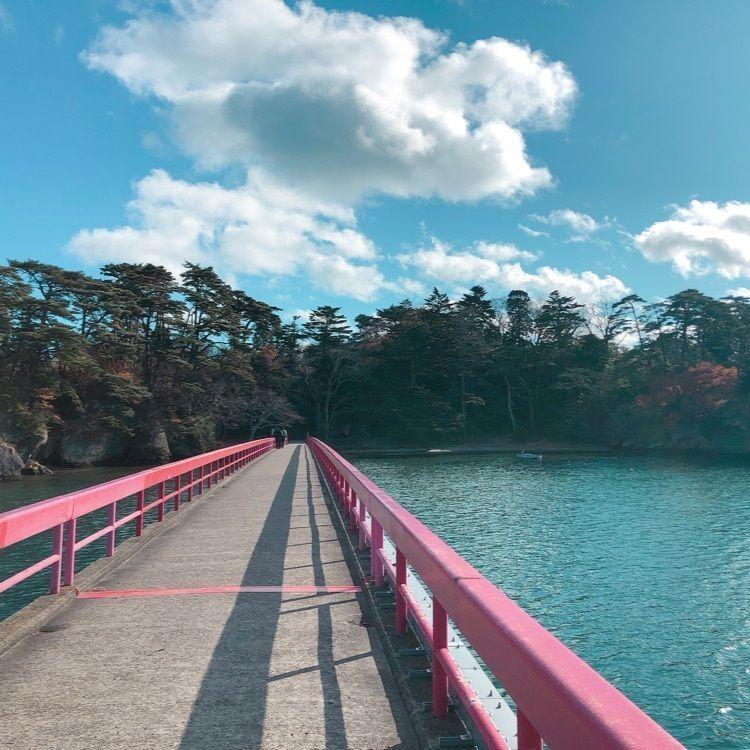 #山分け #宮城 #松島 #松島の観光スポット #松島の絶景 #松島の紅葉