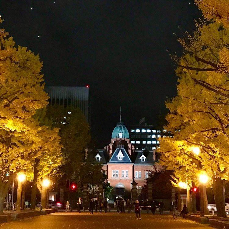 #わたしのおでかけ #イチョウ並木 #赤れんが庁舎 #北海道 #札幌市 #紅葉