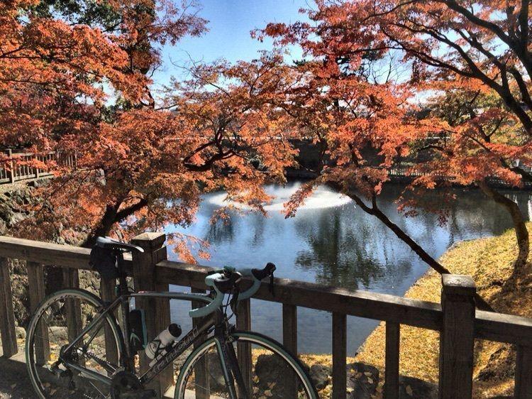 #旅行 #フォトジェニック #わたしのおでかけ #紅葉 #岡崎城 #ロードバイク #ビアンキ #フルクラム #サイクリング