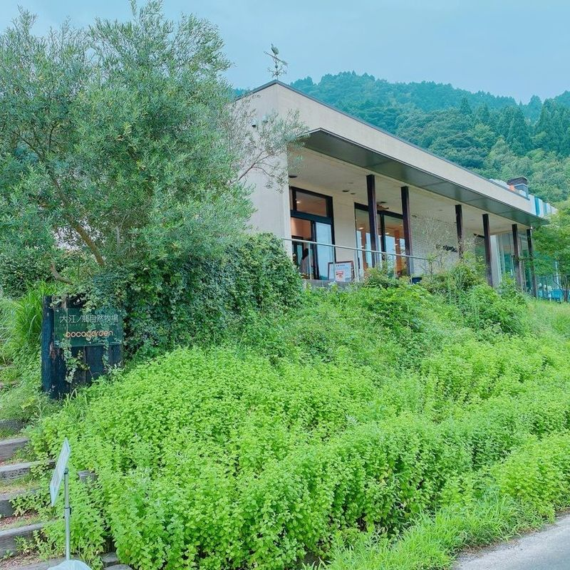 牧場 ココ 大江 ノ 自然 ガーデン 郷