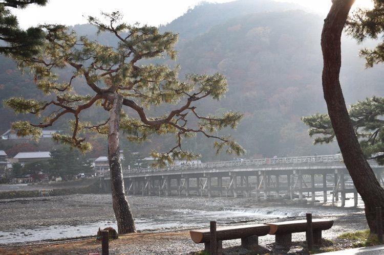 #京都 #京都旅行 #嵐山 #旅行