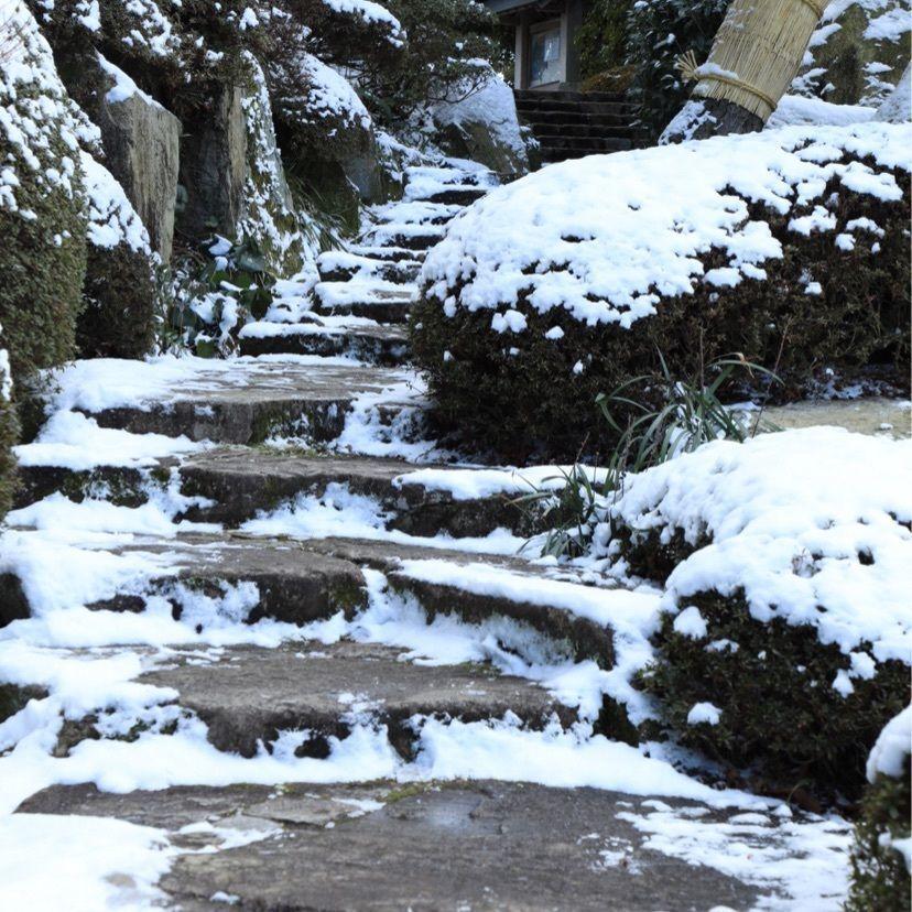 #三景園 #庭園 #冬