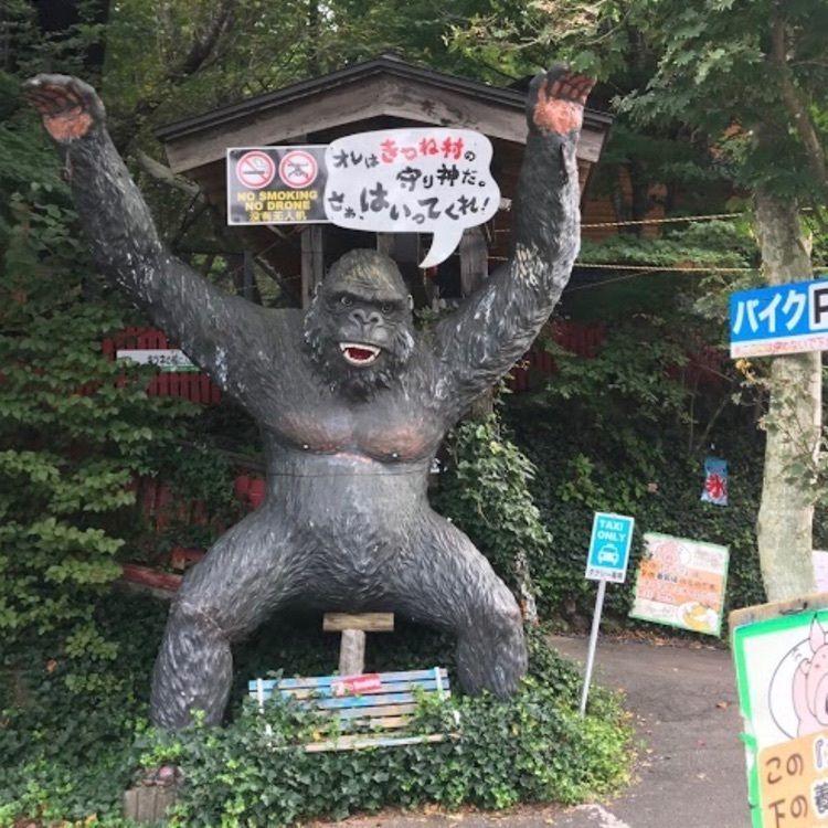 DJゴン太の画像