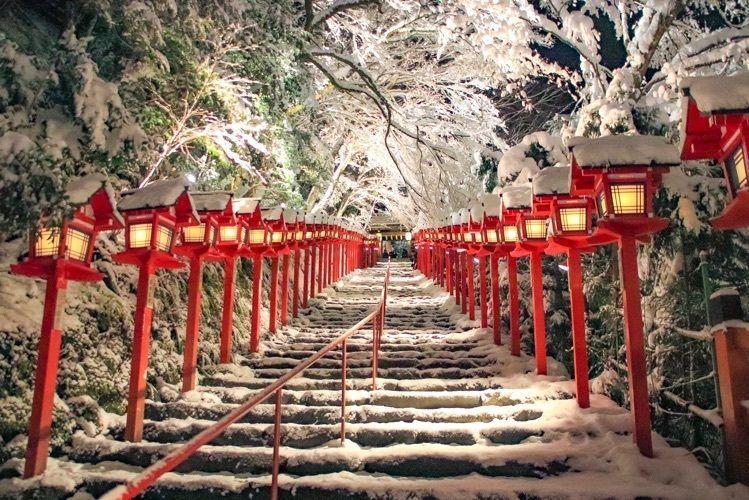 #京都 #貴船神社 #雪の氣生根 #貴船神社ライトアップ #フォトジェニック #冬 #おでかけ