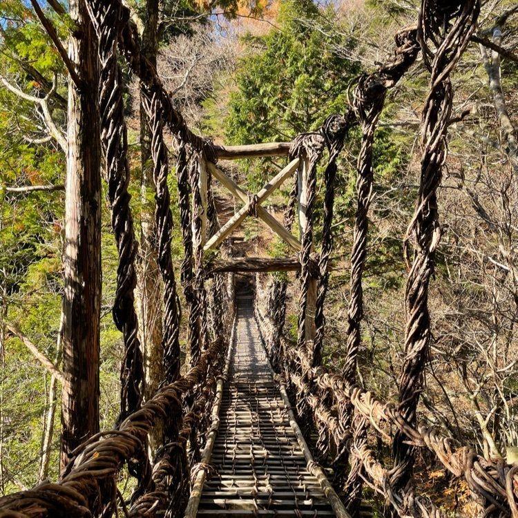 の 橋 祖谷 かずら
