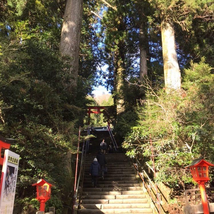 #箱根 #箱根神社 #芦ノ湖