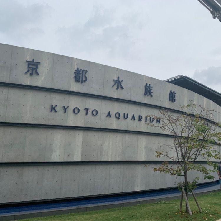 #京都府 #京都水族館