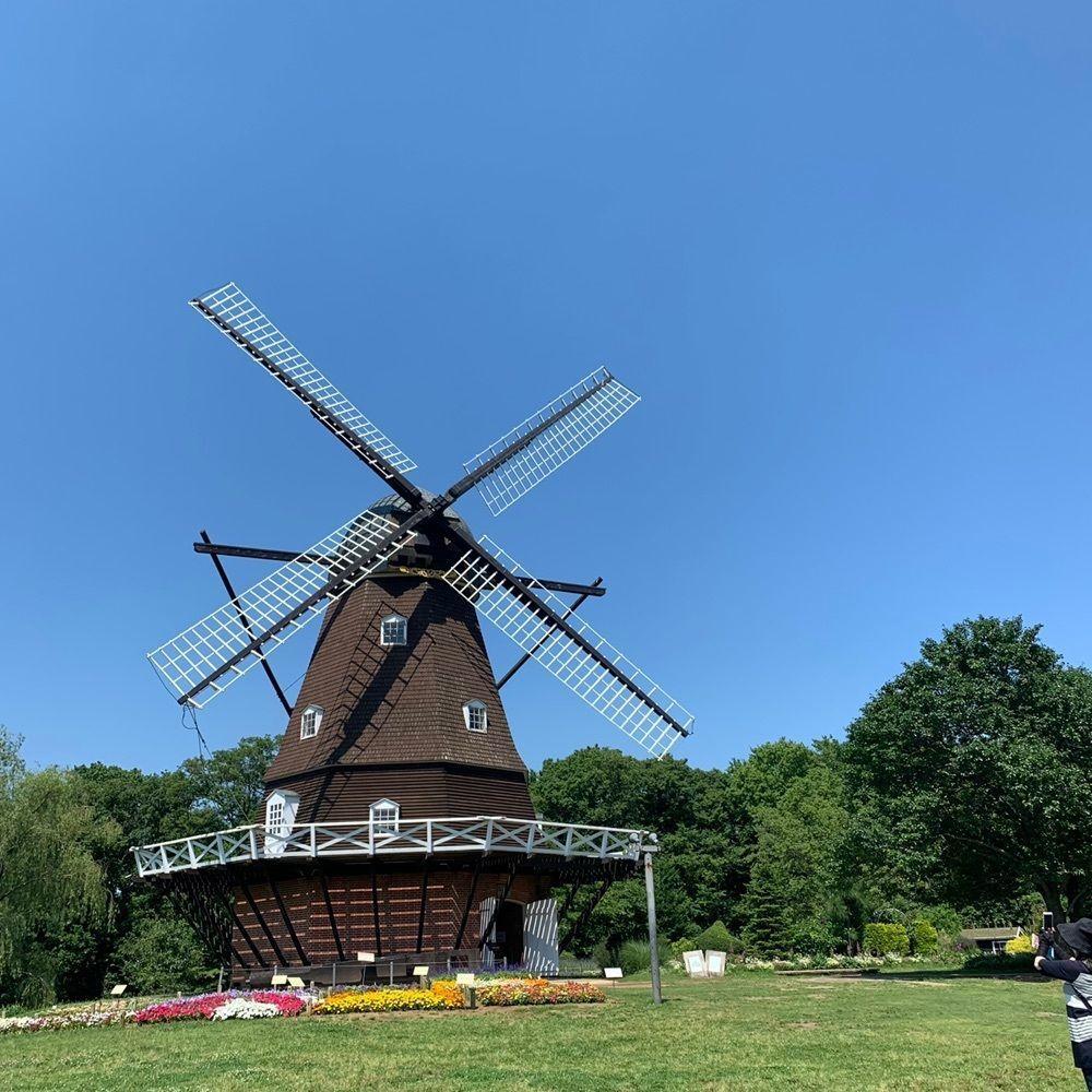 #アンデルセン公園 #晴天 #風車 #タカちゃんの日常 #おでかけ