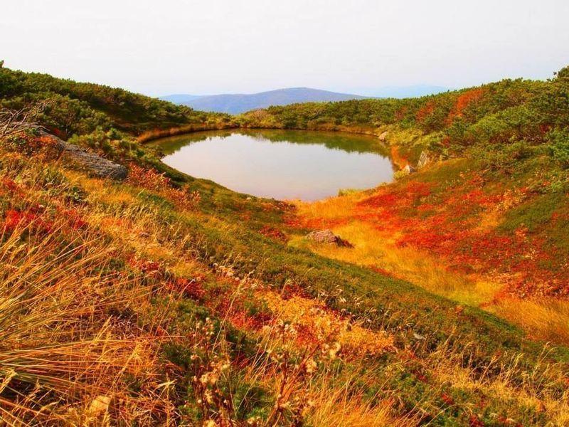 【北海道】日本百名山の「旭岳」で楽しむ、北海道の秋♡