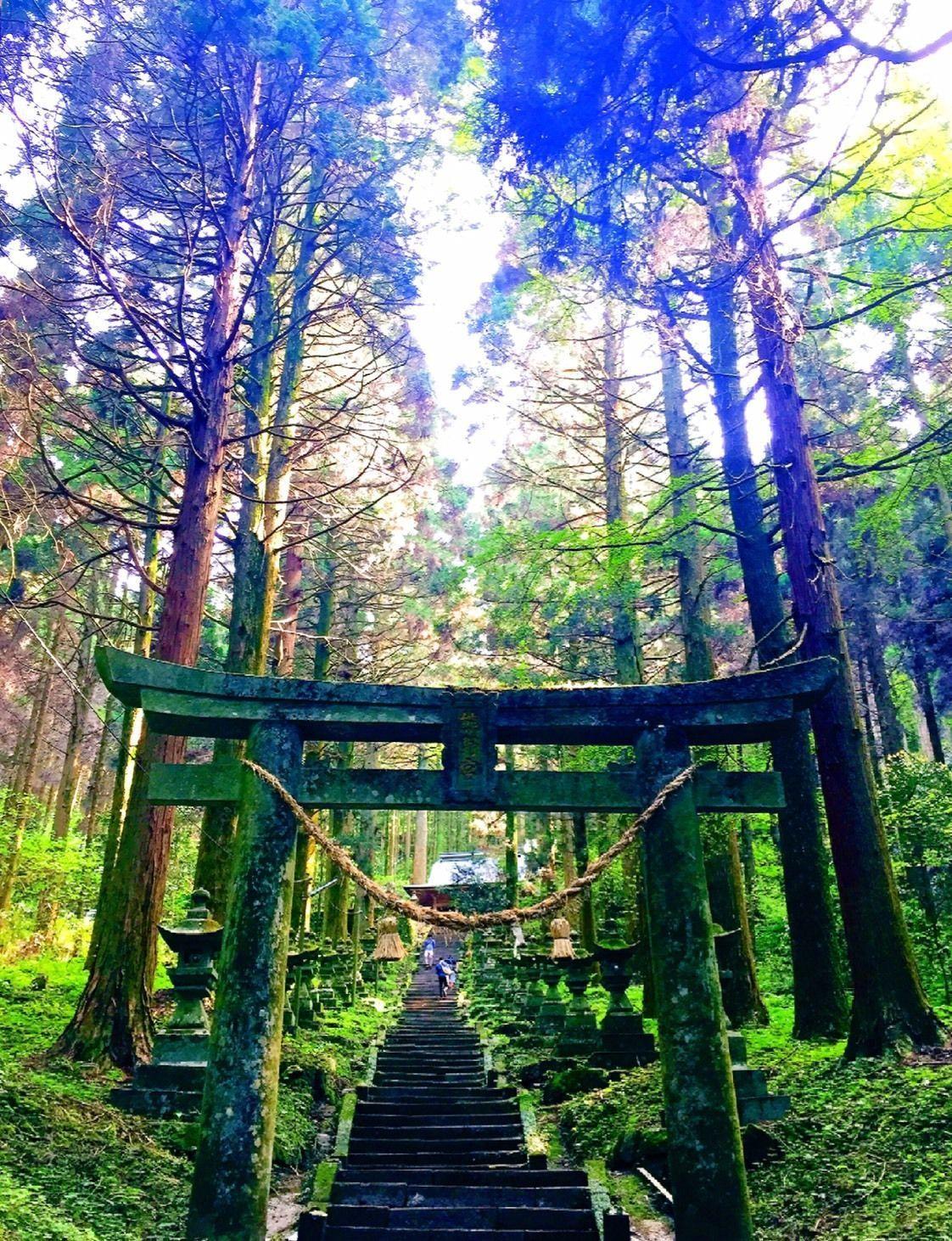 【熊本・阿蘇】熊本に来たら絶対チェックして欲しい!おすすめスポット☆の画像