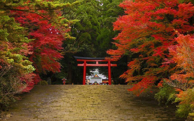 九州の紅葉の名所を厳選!ドライブや温泉がおすすめの13選の画像