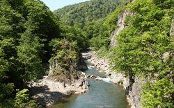 【札幌編】8月の夏休みに北海道で楽しめる観光スポットはここ!
