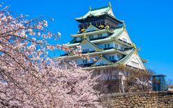 宴会もあり!インスタ映えもあり!大阪の花見スポット10選!