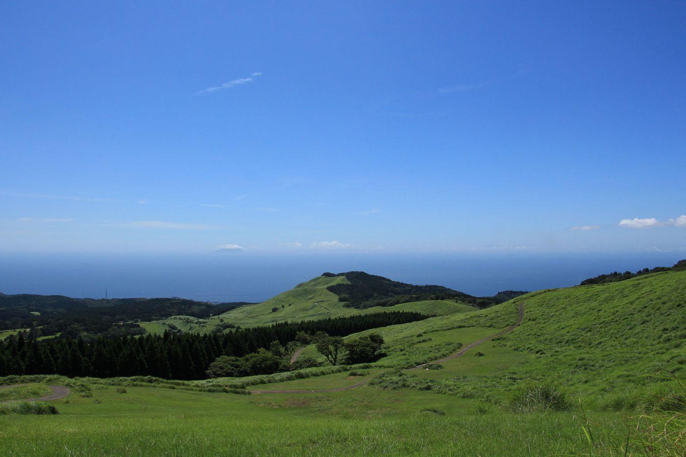 【絶景】ハイキングが楽しめる細野高原の魅力に迫る!東伊豆町の秋の見どころもご紹介の画像