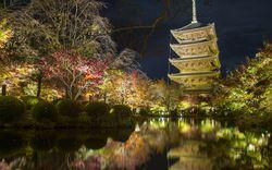 【京都観光】筆者厳選♡伏見稲荷周辺の行くべきスポットをご紹介!