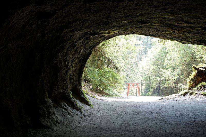 洞穴 溝の口 鹿児島県溝ノ口洞穴 少し怖いインスタ映えなパワースポットのアクセス