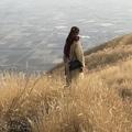 nozopontasu_aumo